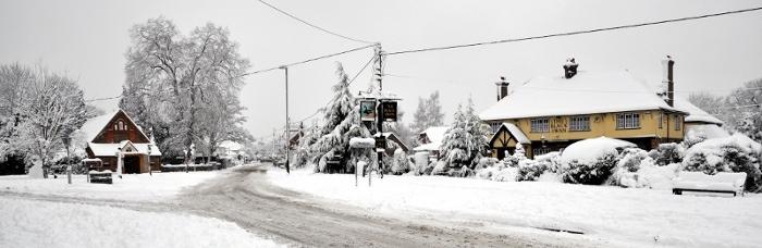 Black Swan in January 2010